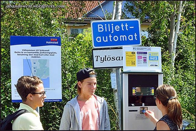 Parkeringsautomat vid Tylösand 4 - Halmstad - 2015-07-22